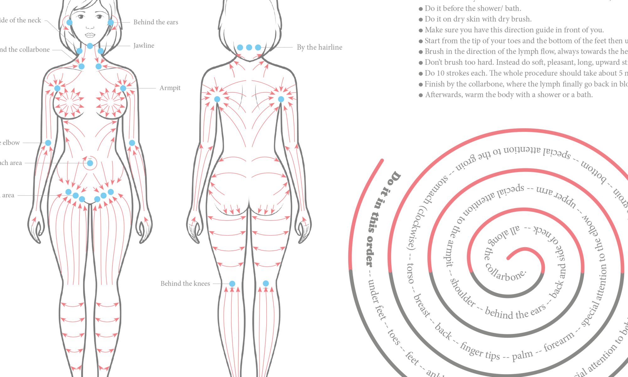 Dry body brushing chart/ guide - Well-being