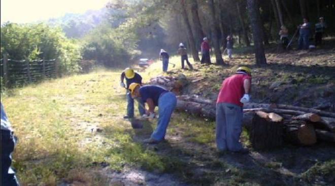 """Forestazione in Basilicata: sindacati, """"basta promesse adesso è il tempo delle risposte"""""""