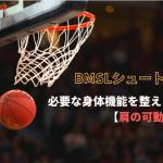 """【バスケ選手必見】シュートに必要な""""肩の可動域""""をチェック【BMSLシュート理論】"""
