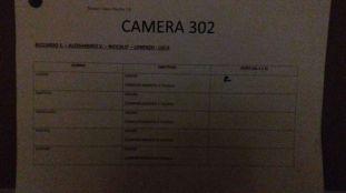 camera 302