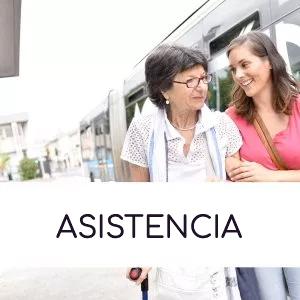 Servicio de Asistencia