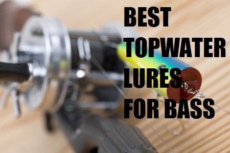 BEST TOPWATER LURES FOR BASS