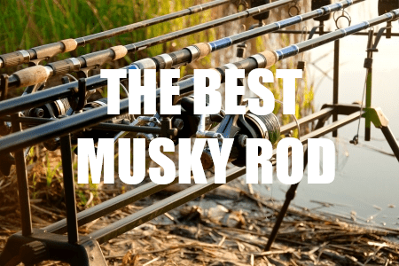 Best Musky Rod
