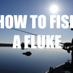 How To Fish A Fluke – 5 Tips To Catch More Bass While Fluke Fishing