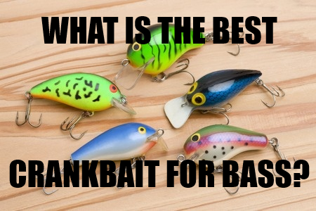best bass crankbait