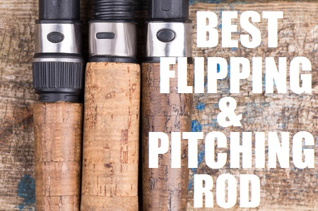 BEST FLIPPING ROD