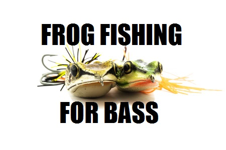 frog fishing for bass