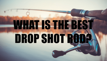 A Shootout For The Best 6wt Fly Rod 2019 - My Top 5 -