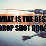 BEST DROP SHOT ROD
