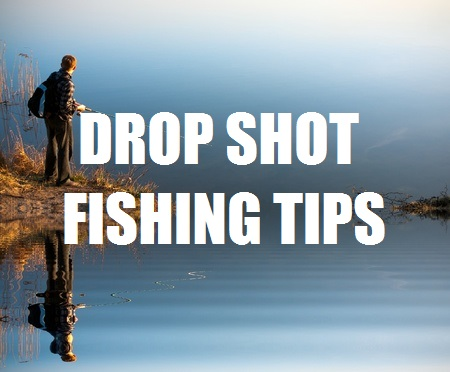 DROP SHOT FISHING TIPS