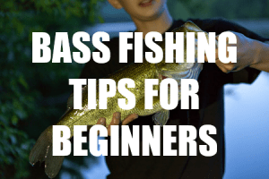 BASS FISHING FOR BEGINNERS