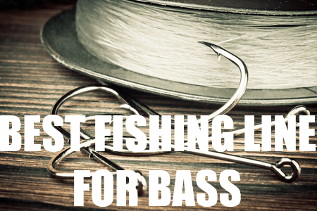 Largemouth bass archives a bass fisherman 39 s guide for Good fishing line