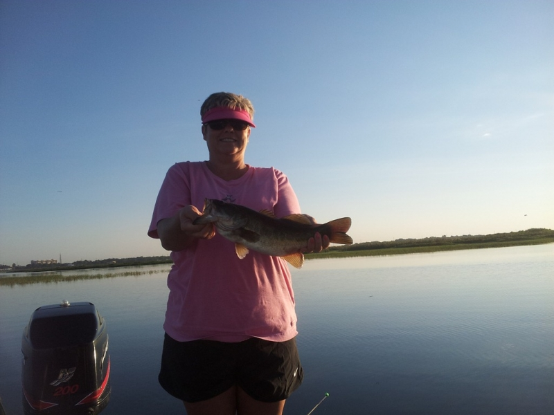 Orlando lake toho bass fishing lake toho guides the for Lake toho fishing guides