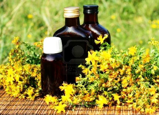 Kako se pravi biljna tinktura - napravite sami biljne kapi
