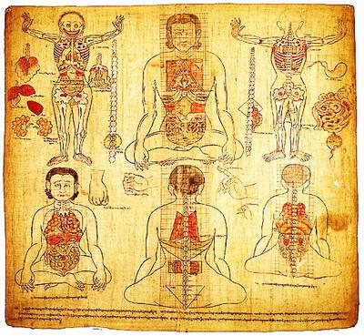 Tibetanska medicina i kako leče tibetanski lekari - poreklo, delovanje, praksa