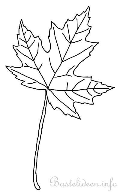 Herbstliches Ausmalbild Fr Kinder Ahornblatt