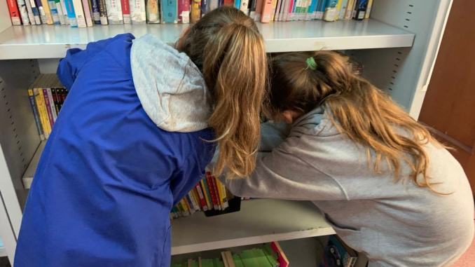 Nel progetto #Gemma, sapere prezioso, appuntamenti gratuiti in biblioteca