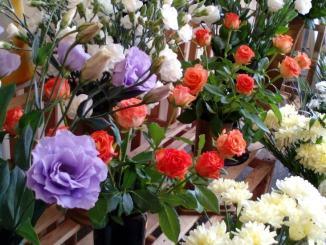 Fioristi e florovivaisti Bastia su ordinazione potranno mettere fiore nei cimiteri
