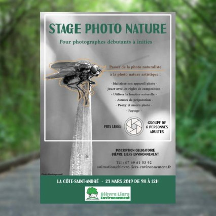 Affiche Stage photo Nature
