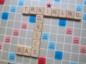 advies en trainingen
