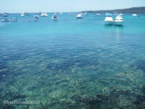 サン・クリストバル島、プエルト・バケリソ・モレノの海