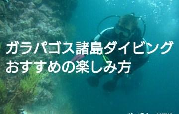 ガラパゴス諸島ダイビング おすすめの楽しみ方