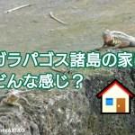 ガラパゴス諸島の家はどんな感じ? アイキャッチ