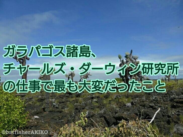 ガラパゴス諸島、チャールズ・ダーウィン研究所の仕事で最も大変だったこと アイキャッチ