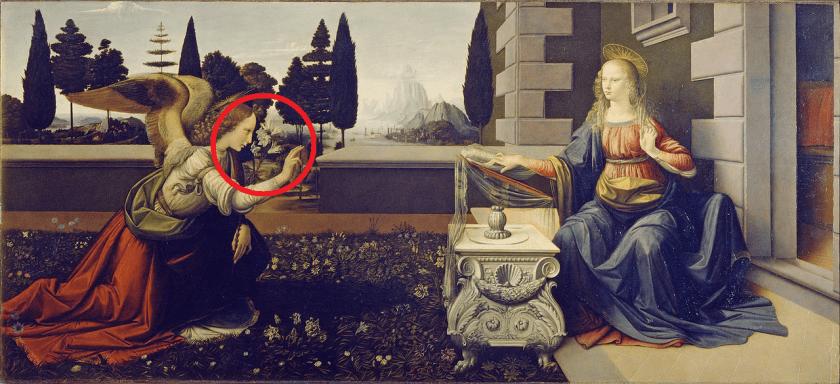 הבשורה לאונרדו - שושן צחור שנגזל מארץ ישראל