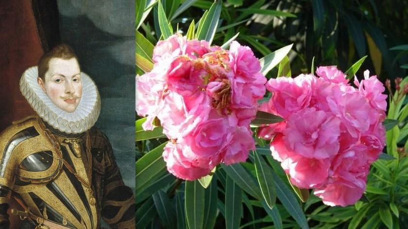 """גחמה ראוותנית, פיליפ השלישי מלך ספרד והרדוף הנחלים פרח """"מלא"""""""
