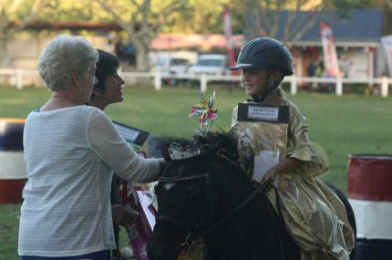 Fancy-Dress-Horse-Competiton