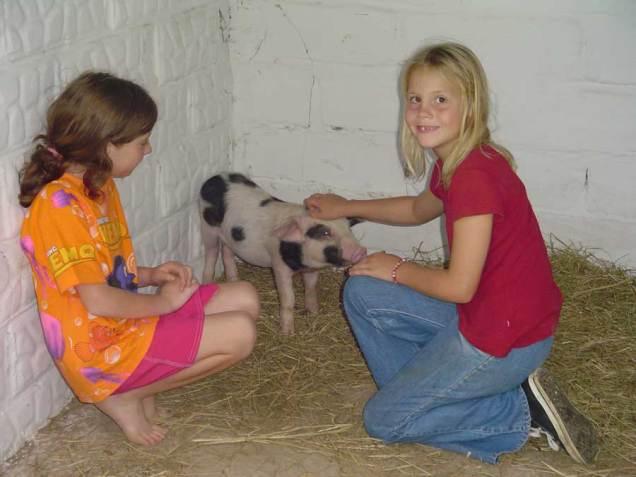 Kids-&-Baby-Pig