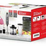 Zilan, Mixeur Plongeant Set 4 en 1, en acier inoxydable avec fouet, noir, 300W