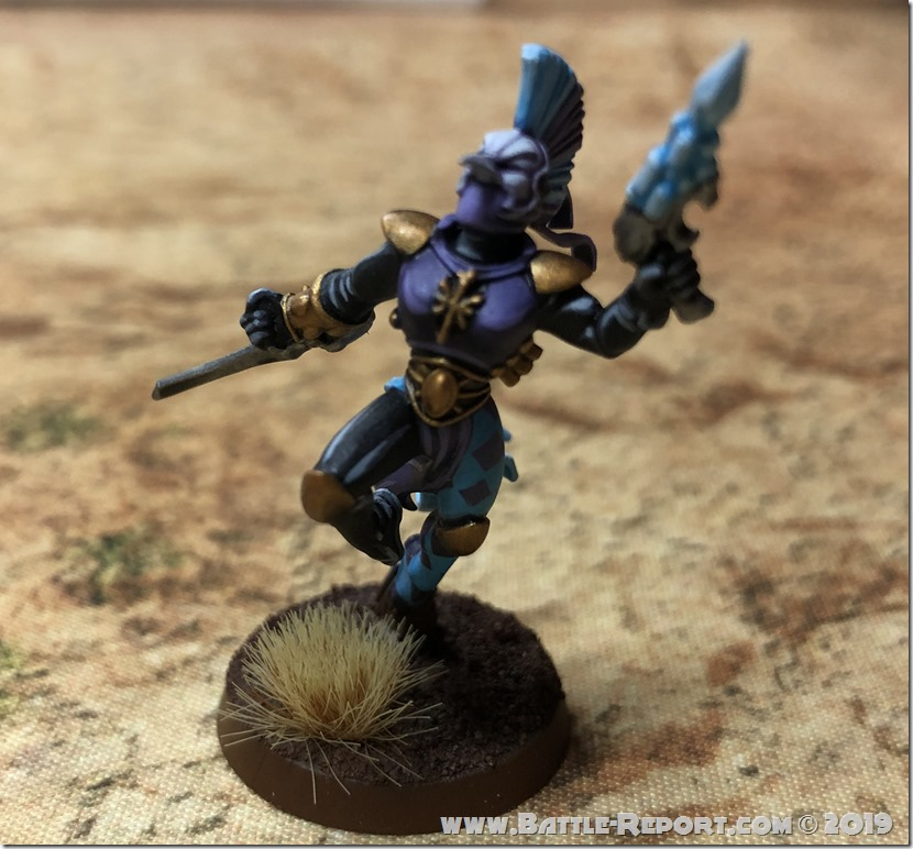 Harlequin Troupe Master by Bill (9)