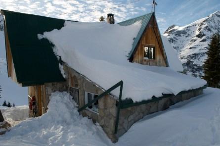 line-of-skiis