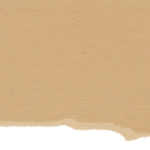 cropped-paper-texture-header.png