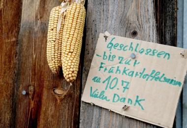 Vorjahresernte ausverkauft - Bis zur Früjahrskartoffelernte Mitte Juli, Foto: Bauernhof Post, Mieming