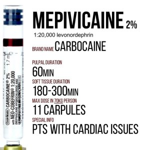 Mepivicaine levonordephrin information