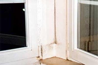 undichte Fensterkopplung führt zur Schimmelpilzbildung
