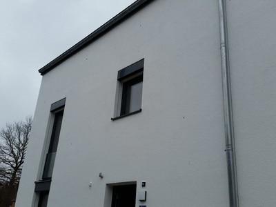 Mängel an Fassade: unzureichende Tropfkanten Baumangel nach Abnahme, Schimmel an Dachbalken
