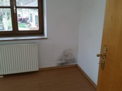 Schimmel Wohnung Wandecke