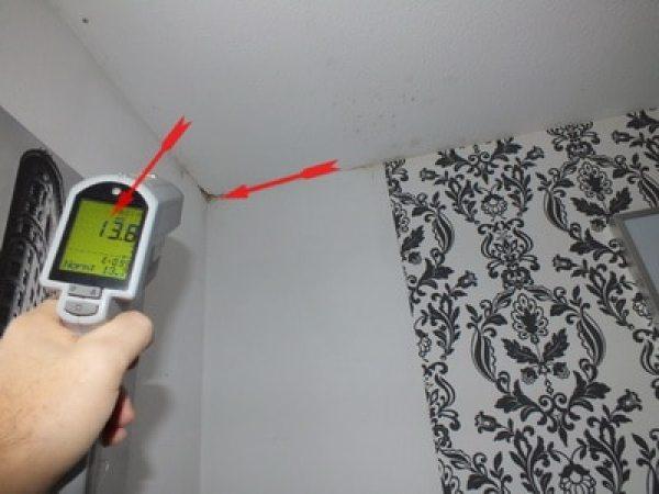 Baufeuchte messen Wände Schimmelpilz in Wohnungen Schimmel alle Zimmer Schimmel in Wandecke