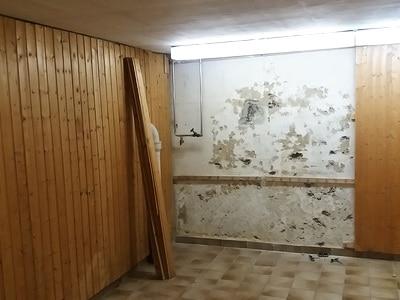 Gutachter BauMängel Keller mit Holzverkeidung Bilder