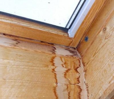 Schimmelexperte, Regenwasserschaden am Veluxfenster Dachfenster