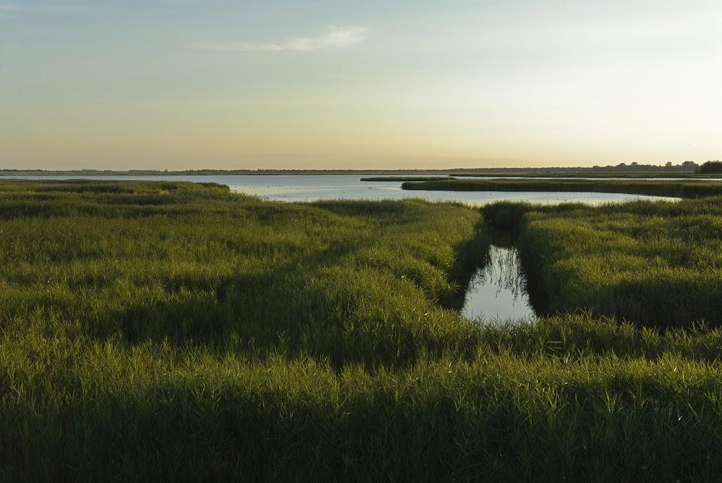 Blick über den Bodden zur Schutzinsel Kirr