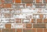 Verblend-Mauerwerk mit Salzausblühungen