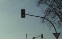 Verkehrsampel zeigt rot und grün