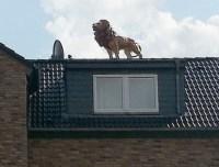 Löwe Statue auf Dach Haus