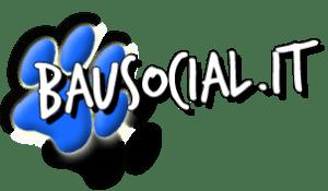 LOGO BAU SOCIAL