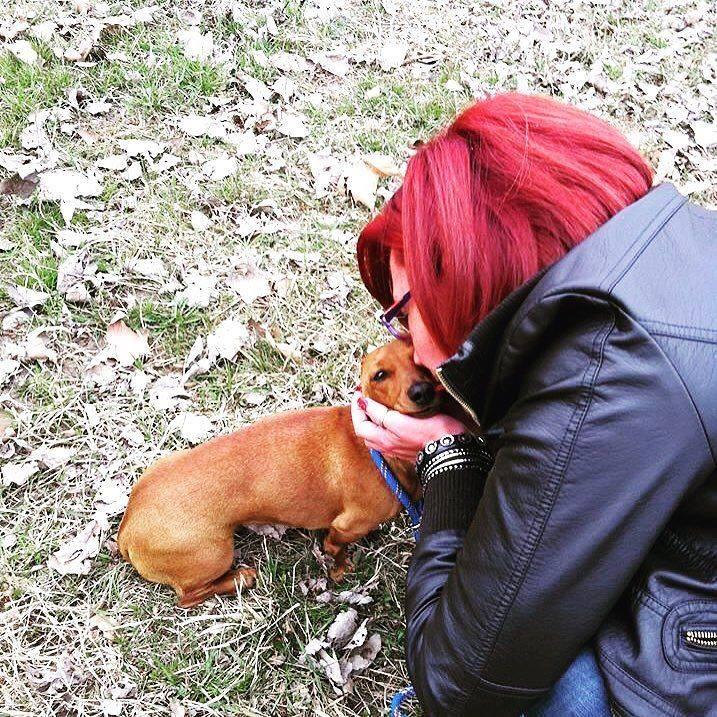 adozioni-storie-cani